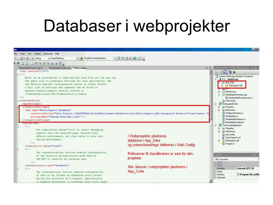 Databaser i webprojekter