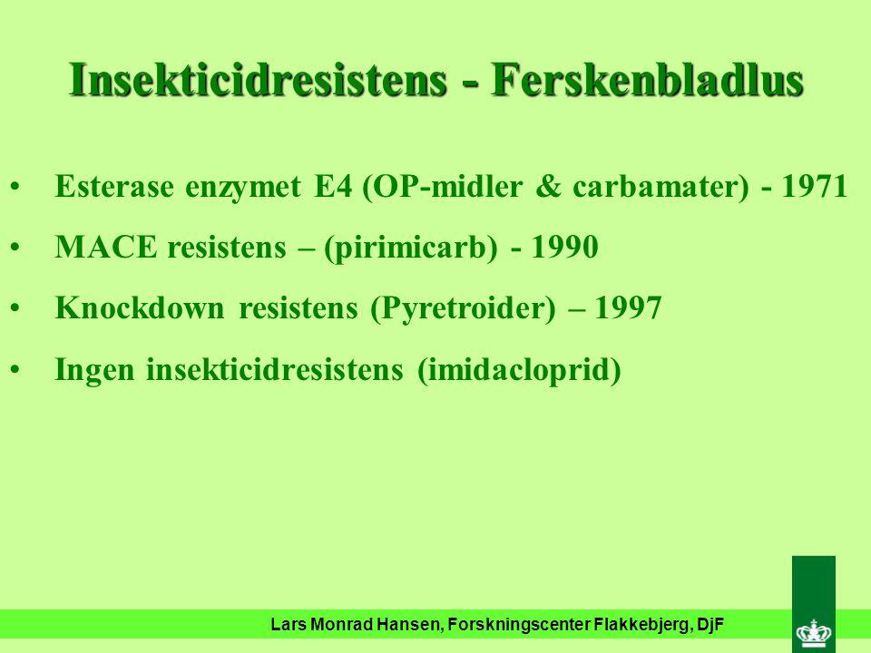 Lars Monrad Hansen, Forskningscenter Flakkebjerg, DjF Insekticidresistens - Ferskenbladlus