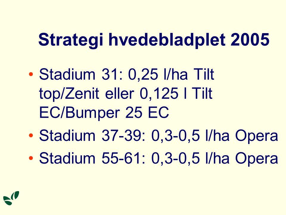 Strategi hvedebladplet 2005 Stadium 31: 0,25 l/ha Tilt top/Zenit eller 0,125 l Tilt EC/Bumper 25 EC Stadium 37-39: 0,3-0,5 l/ha Opera Stadium 55-61: 0,3-0,5 l/ha Opera