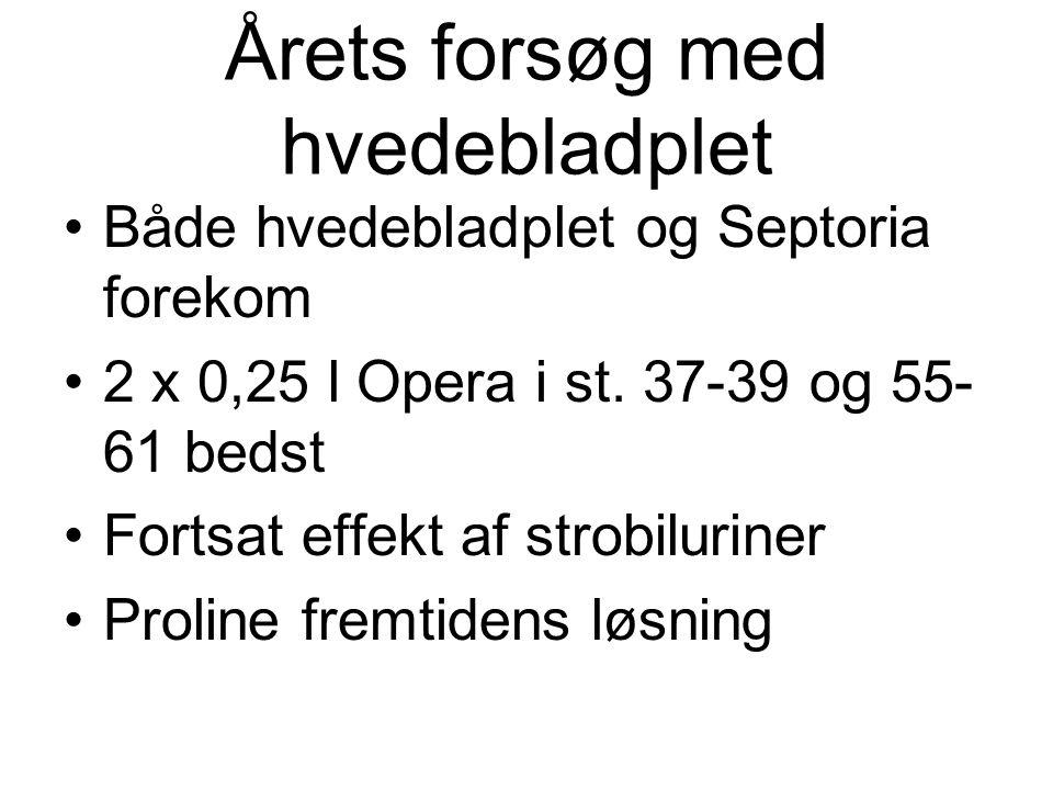 Årets forsøg med hvedebladplet Både hvedebladplet og Septoria forekom 2 x 0,25 l Opera i st.