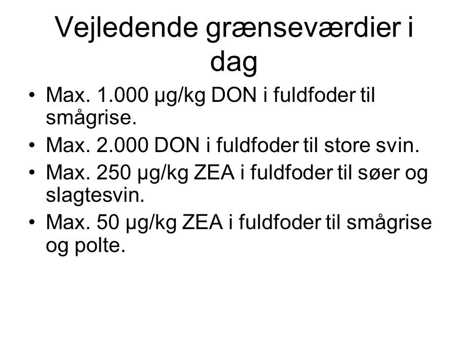 Vejledende grænseværdier i dag Max. 1.000 µg/kg DON i fuldfoder til smågrise.
