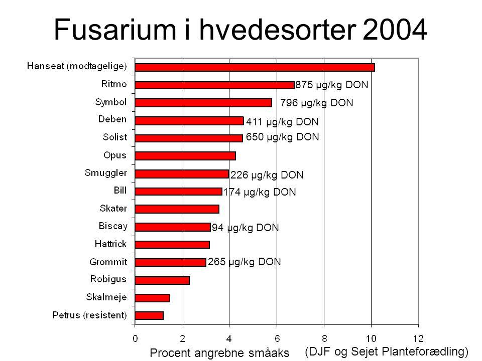 Fusarium i hvedesorter 2004 Planteavlsorientering Nr.