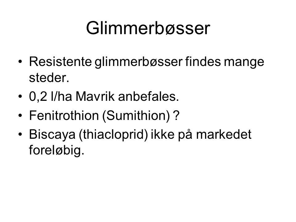 Glimmerbøsser Resistente glimmerbøsser findes mange steder.