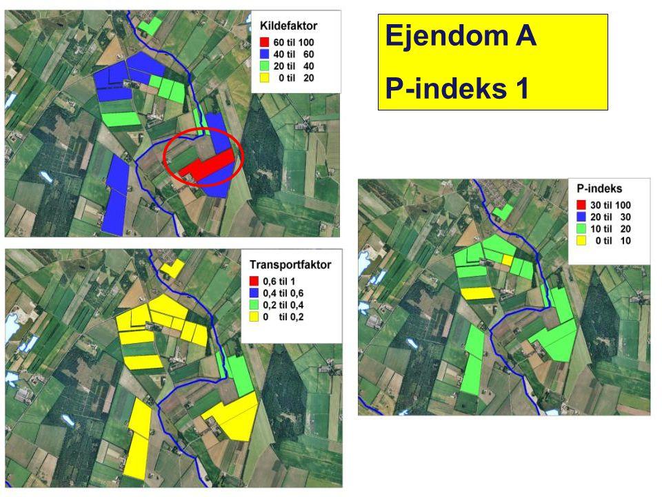 Planteproduktion Ejendom A P-indeks 1