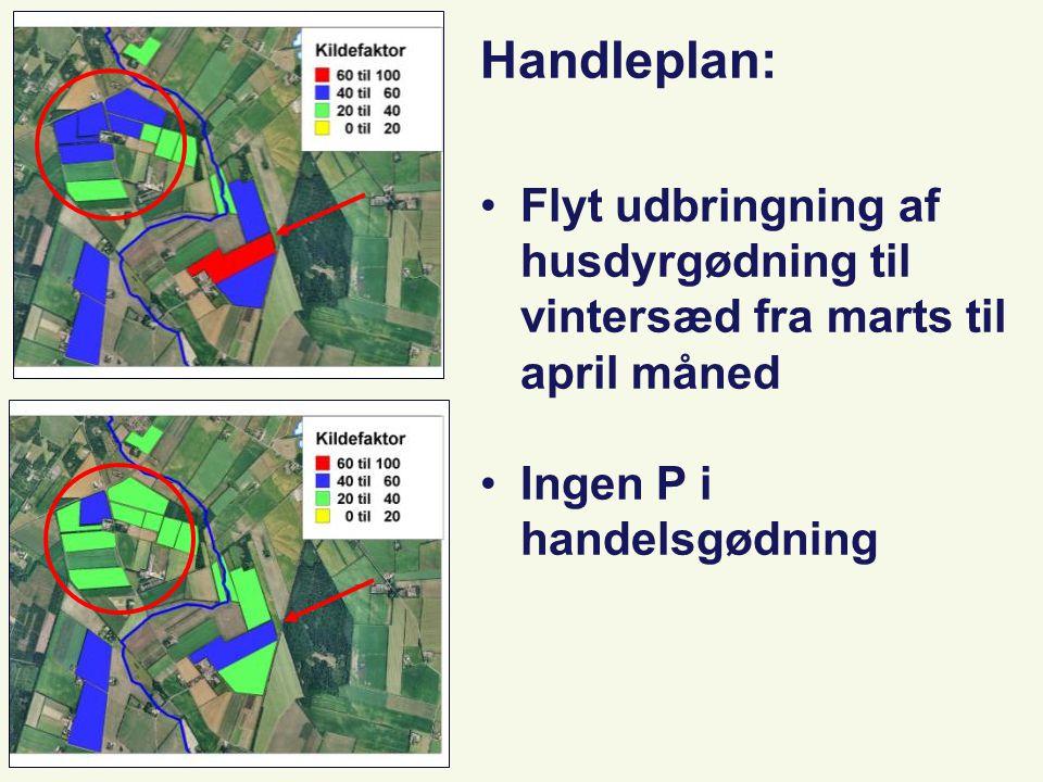 Planteproduktion Handleplan: Flyt udbringning af husdyrgødning til vintersæd fra marts til april måned Ingen P i handelsgødning