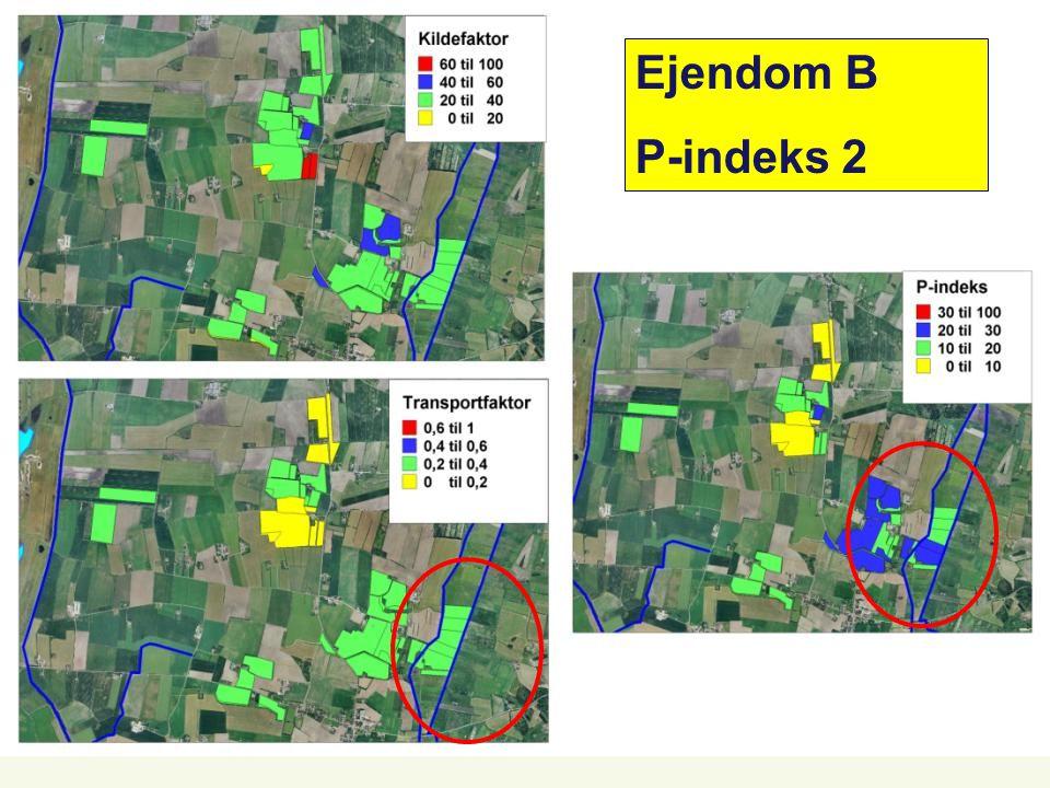 Ejendom B P-indeks 2