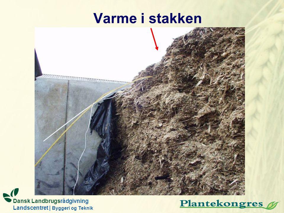 Dansk Landbrugsrådgivning Landscentret | Byggeri og Teknik Varme i stakken