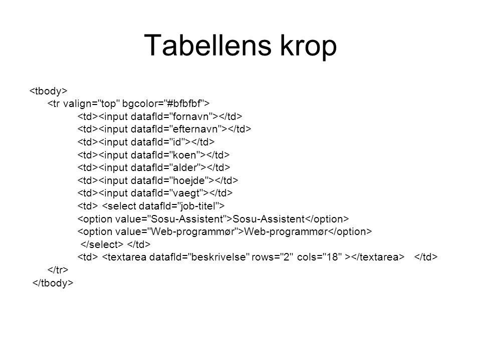 Tabellens krop Sosu-Assistent Web-programmør
