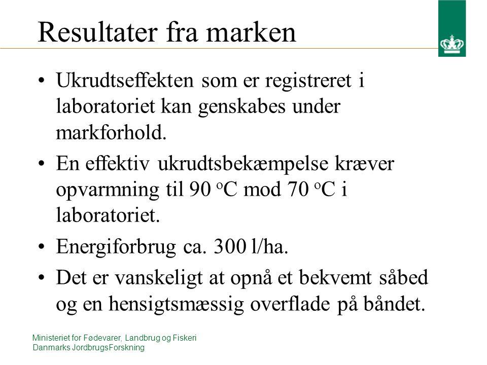 Ministeriet for Fødevarer, Landbrug og Fiskeri Danmarks JordbrugsForskning Resultater fra marken Ukrudtseffekten som er registreret i laboratoriet kan genskabes under markforhold.