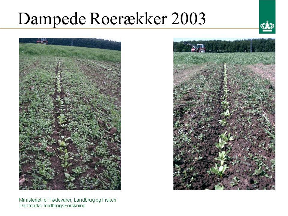 Ministeriet for Fødevarer, Landbrug og Fiskeri Danmarks JordbrugsForskning Dampede Roerækker 2003