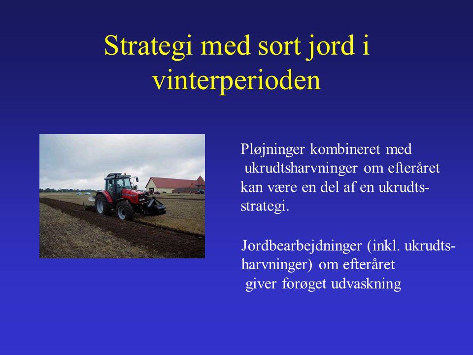 Strategi med sort jord i vinterperioden Pløjninger kombineret med ukrudtsharvninger om efteråret kan være en del af en ukrudts- strategi.