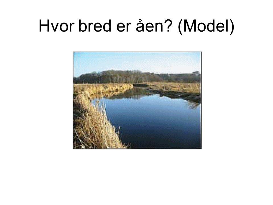 Hvor bred er åen (Model)