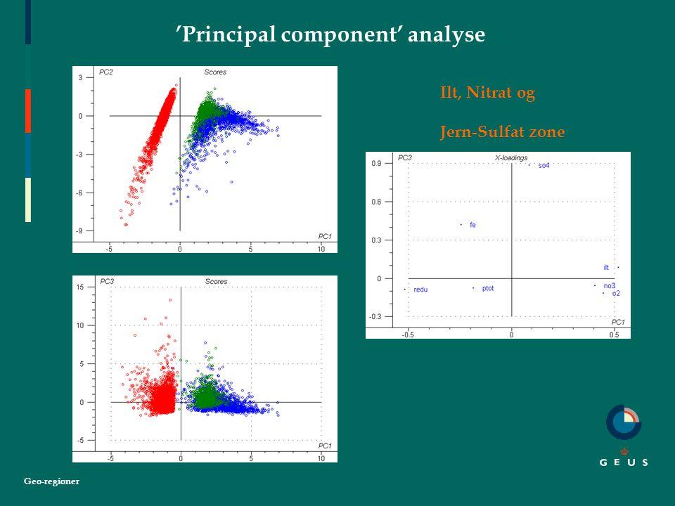 Geo-regioner 'Principal component' analyse Ilt, Nitrat og Jern-Sulfat zone