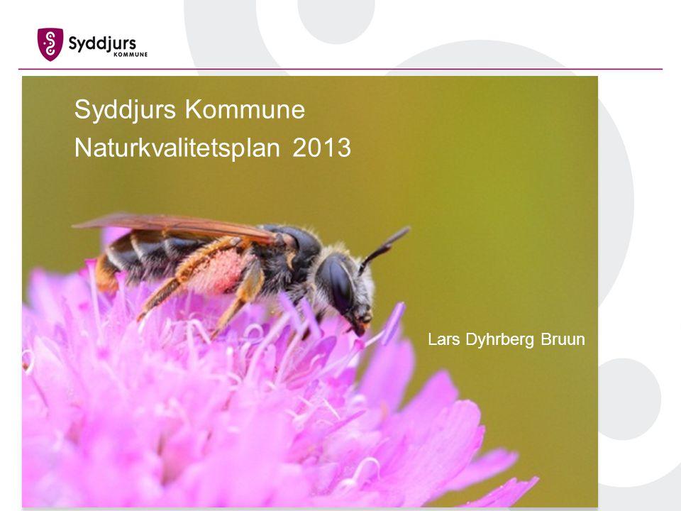 Syddjurs Kommune Naturkvalitetsplan 2013 Lars Dyhrberg Bruun