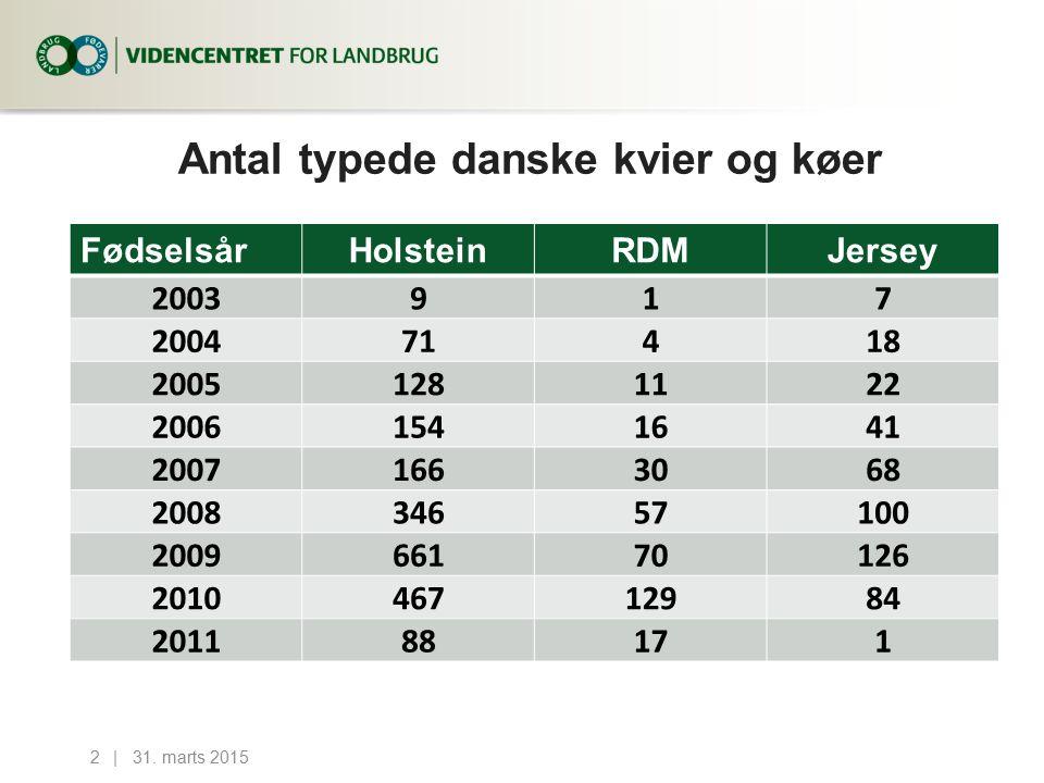 Antal typede danske kvier og køer 31.