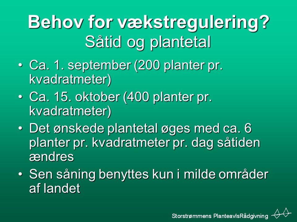 Behov for vækstregulering. Ca. 1. september (200 planter pr.