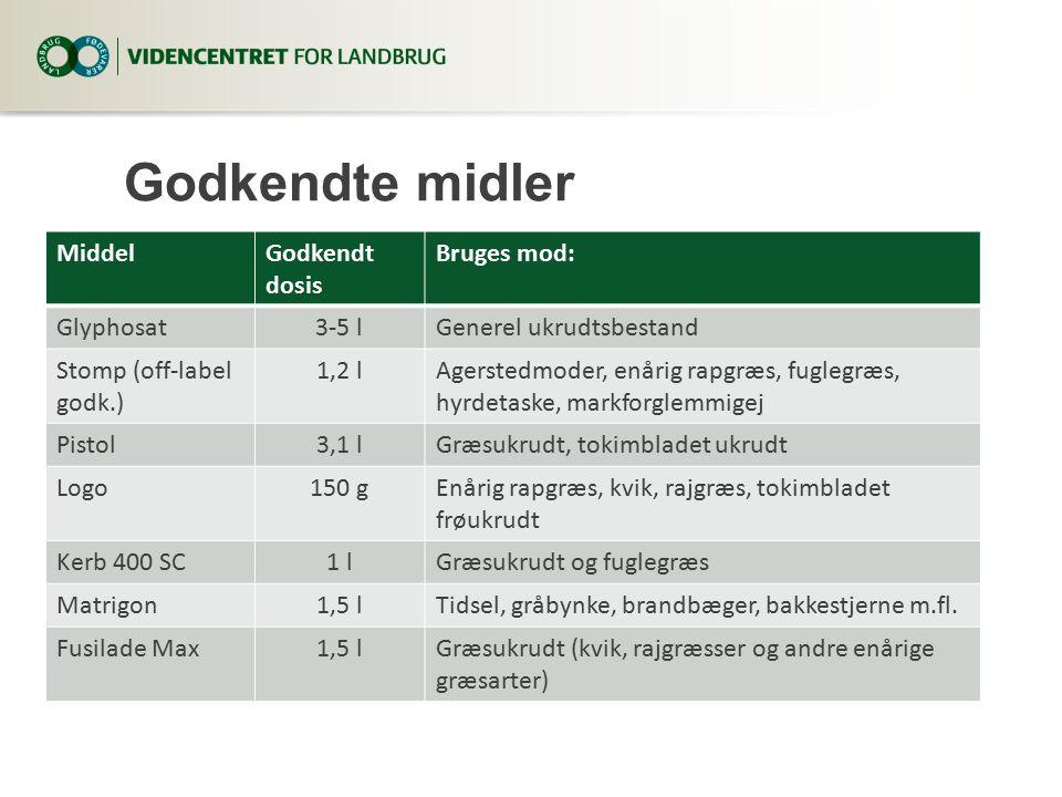 Godkendte midler MiddelGodkendt dosis Bruges mod: Glyphosat3-5 lGenerel ukrudtsbestand Stomp (off-label godk.) 1,2 lAgerstedmoder, enårig rapgræs, fuglegræs, hyrdetaske, markforglemmigej Pistol3,1 lGræsukrudt, tokimbladet ukrudt Logo150 gEnårig rapgræs, kvik, rajgræs, tokimbladet frøukrudt Kerb 400 SC1 lGræsukrudt og fuglegræs Matrigon1,5 lTidsel, gråbynke, brandbæger, bakkestjerne m.fl.