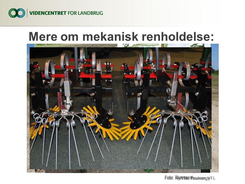 Mere om mekanisk renholdelse: Foto: Ny Vraa BioenergyFoto: Rolf Th. Poulsen, VFL Foto: Thyregod
