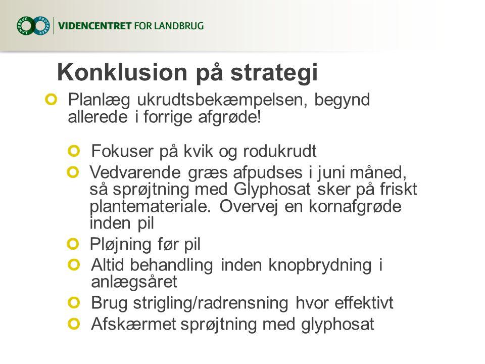 Konklusion på strategi Planlæg ukrudtsbekæmpelsen, begynd allerede i forrige afgrøde.