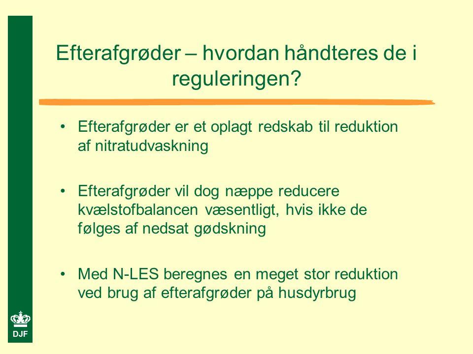 DJF Efterafgrøder – hvordan håndteres de i reguleringen.