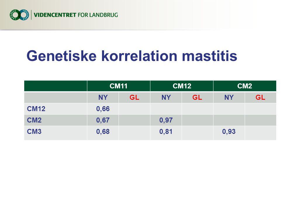 Genetiske korrelation mastitis CM11CM12CM2 NYGLNYGLNYGL CM120,66 CM20,670,97 CM30,680,810,93