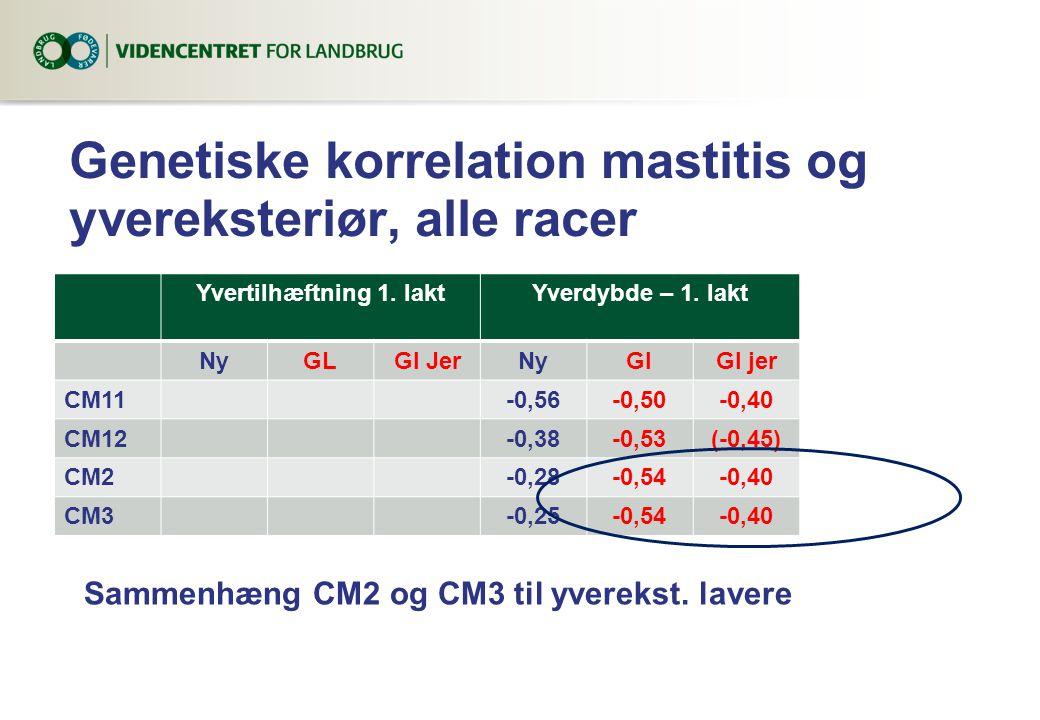 Genetiske korrelation mastitis og yvereksteriør, alle racer Yvertilhæftning 1.