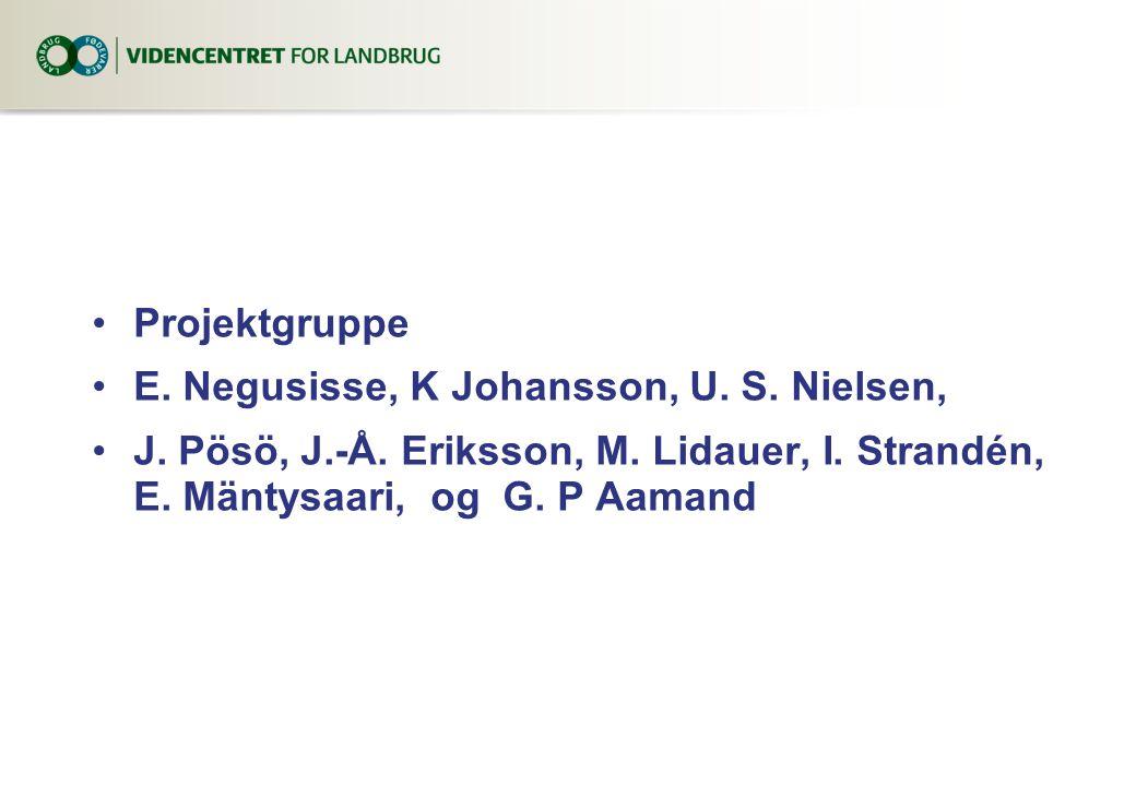 Projektgruppe E. Negusisse, K Johansson, U. S. Nielsen, J.