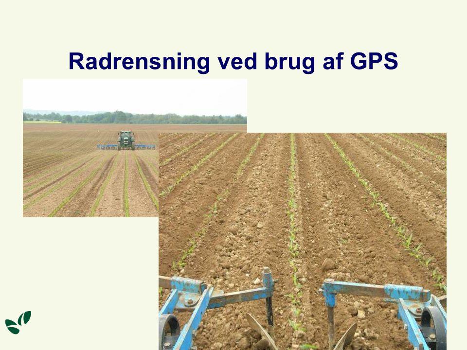 Radrensning ved brug af GPS