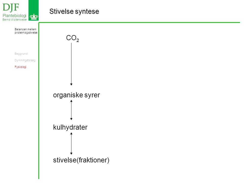 Stivelse syntese DJF DJF Plantebiologi Bernd Wollenweber CO 2 organiske syrer kulhydrater stivelse(fraktioner) Balancen mellem protein og stivelse Baggrund Dyrkningsforsøg Fysiologi