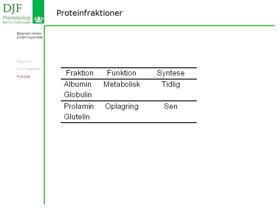 Proteinfraktioner DJF DJF Plantebiologi Bernd Wollenweber Balancen mellem protein og stivelse Baggrund Dyrkningsforsøg Fysiologi