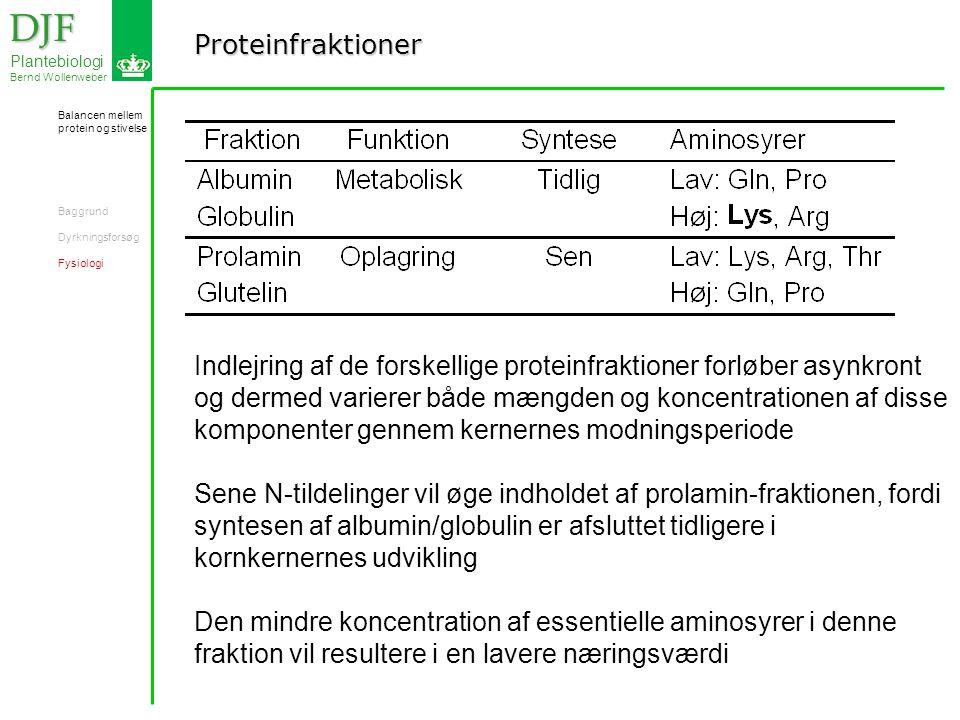 Proteinfraktioner DJF DJF Plantebiologi Bernd Wollenweber Indlejring af de forskellige proteinfraktioner forløber asynkront og dermed varierer både mængden og koncentrationen af disse komponenter gennem kernernes modningsperiode Sene N-tildelinger vil øge indholdet af prolamin-fraktionen, fordi syntesen af albumin/globulin er afsluttet tidligere i kornkernernes udvikling Den mindre koncentration af essentielle aminosyrer i denne fraktion vil resultere i en lavere næringsværdi Balancen mellem protein og stivelse Baggrund Dyrkningsforsøg Fysiologi