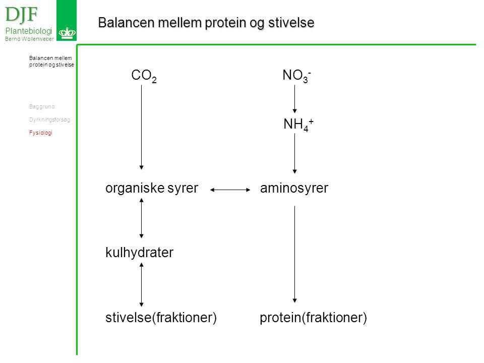 Balancen mellem protein og stivelse DJF DJF Plantebiologi Bernd Wollenweber CO 2 NO 3 - NH 4 + organiske syrer aminosyrer kulhydrater stivelse(fraktioner) protein(fraktioner) Balancen mellem protein og stivelse Baggrund Dyrkningsforsøg Fysiologi
