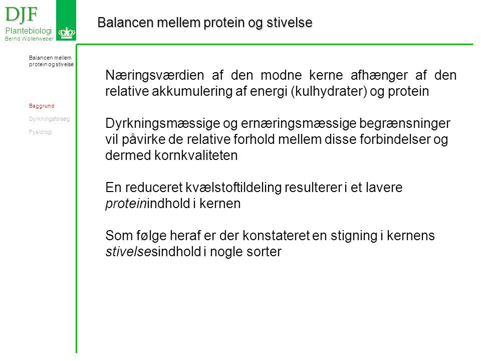 Balancen mellem protein og stivelse DJF DJF Plantebiologi Bernd Wollenweber Næringsværdien af den modne kerne afhænger af den relative akkumulering af energi (kulhydrater) og protein Dyrkningsmæssige og ernæringsmæssige begrænsninger vil påvirke de relative forhold mellem disse forbindelser og dermed kornkvaliteten En reduceret kvælstoftildeling resulterer i et lavere proteinindhold i kernen Som følge heraf er der konstateret en stigning i kernens stivelsesindhold i nogle sorter Balancen mellem protein og stivelse Baggrund Dyrkningsforsøg Fysiologi