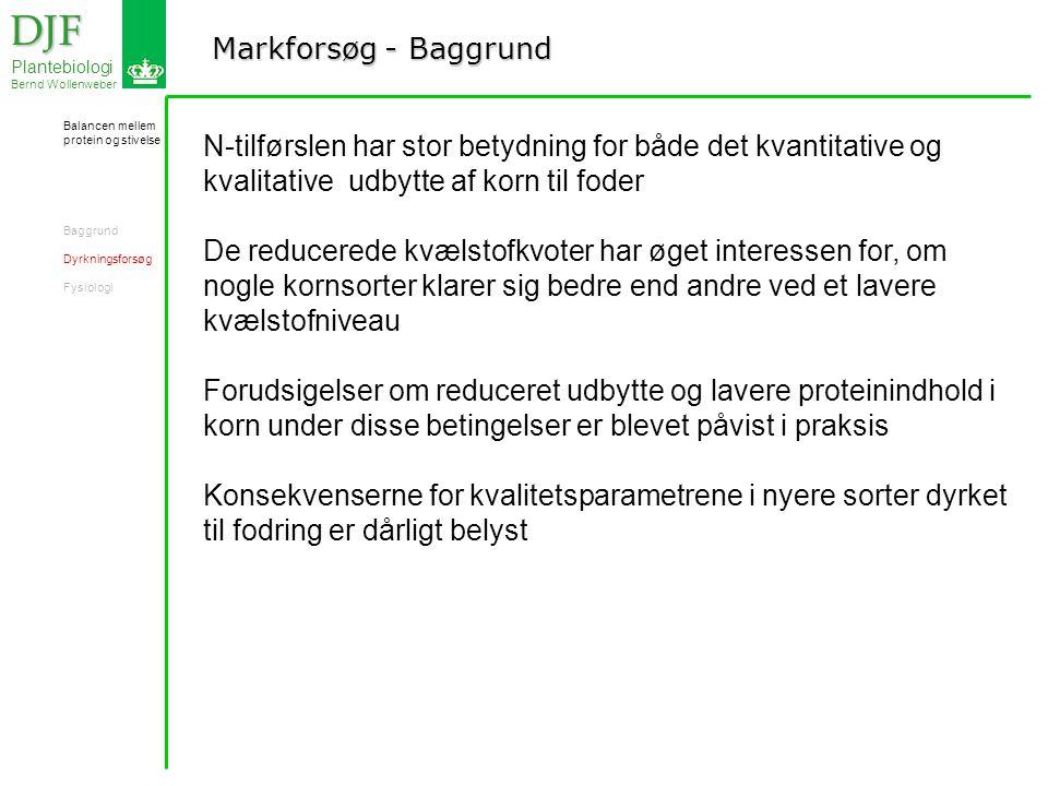 Markforsøg - Baggrund DJF DJF Plantebiologi Bernd Wollenweber N-tilførslen har stor betydning for både det kvantitative og kvalitative udbytte af korn til foder De reducerede kvælstofkvoter har øget interessen for, om nogle kornsorter klarer sig bedre end andre ved et lavere kvælstofniveau Forudsigelser om reduceret udbytte og lavere proteinindhold i korn under disse betingelser er blevet påvist i praksis Konsekvenserne for kvalitetsparametrene i nyere sorter dyrket til fodring er dårligt belyst Balancen mellem protein og stivelse Baggrund Dyrkningsforsøg Fysiologi