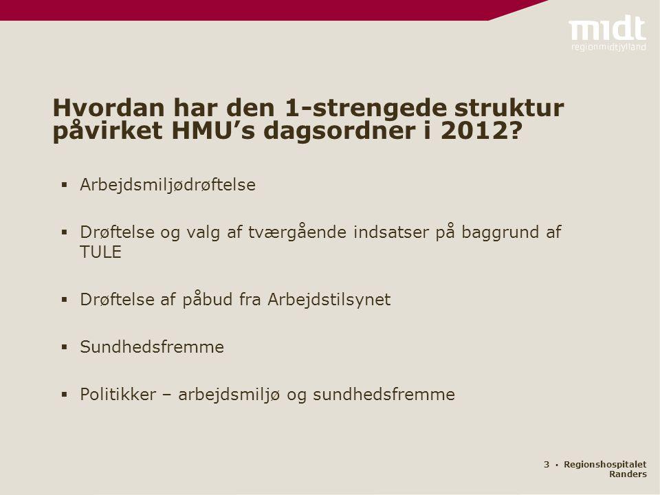 3 ▪ Regionshospitalet Randers Hvordan har den 1-strengede struktur påvirket HMU's dagsordner i 2012.