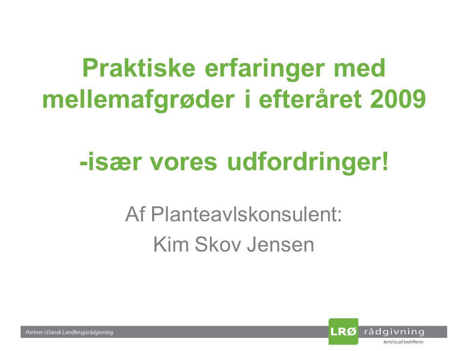 Praktiske erfaringer med mellemafgrøder i efteråret 2009 -især vores udfordringer.