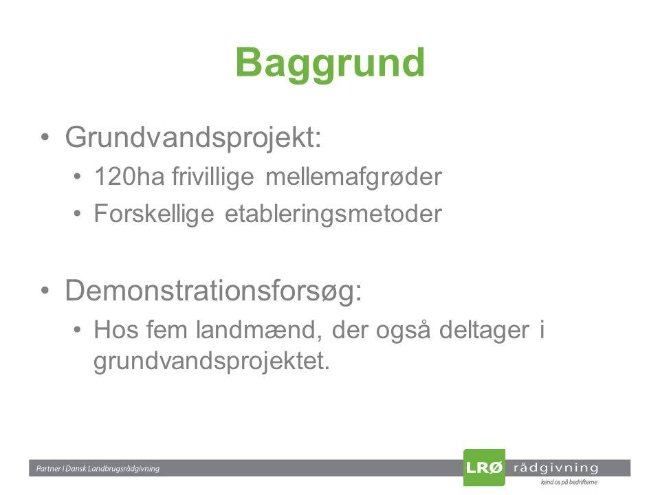 Baggrund Grundvandsprojekt: 120ha frivillige mellemafgrøder Forskellige etableringsmetoder Demonstrationsforsøg: Hos fem landmænd, der også deltager i grundvandsprojektet.