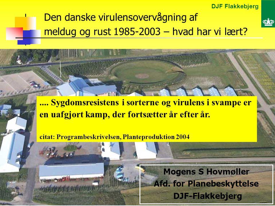 DJF Flakkebjerg Mogens St.