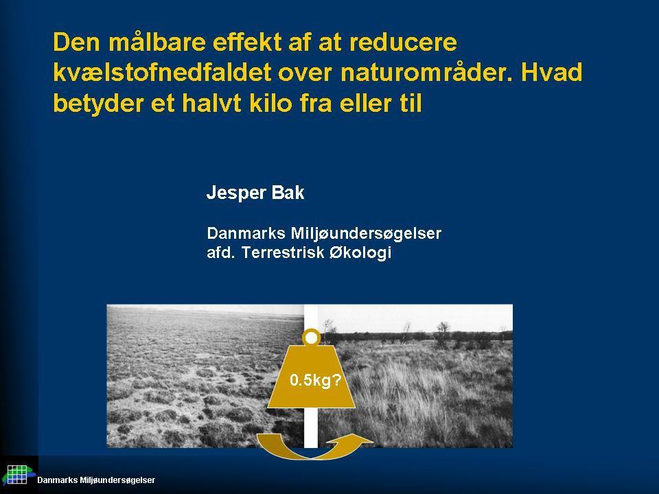 Danmarks Miljøundersøgelser