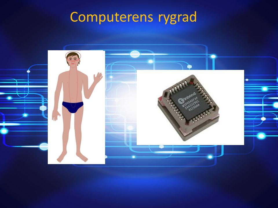Computerens rygrad Af: Patrick Renowden Olsen