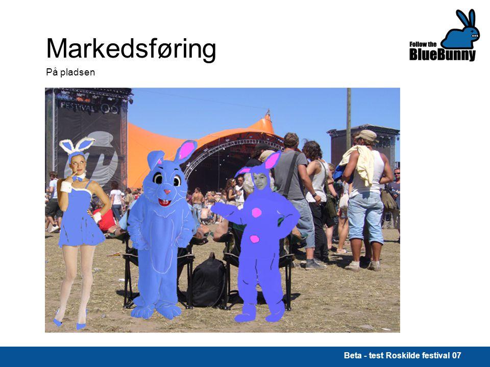 Beta - test Roskilde festival 07 Markedsføring På pladsen