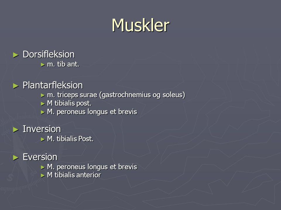 Muskler ► Dorsifleksion ► m.tib ant. ► Plantarfleksion ► m.