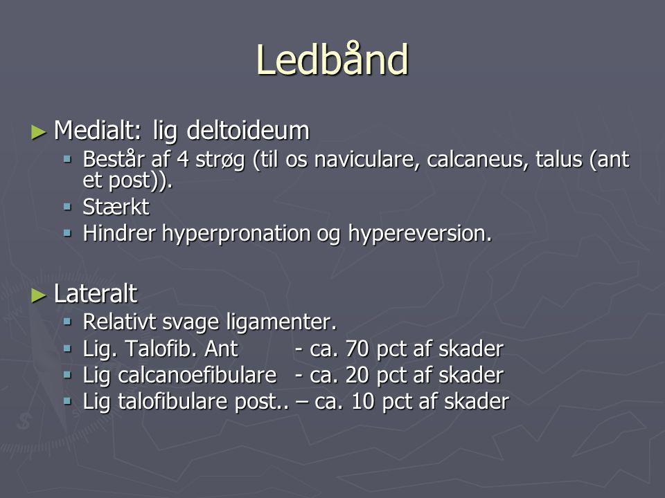 Ledbånd ► Medialt: lig deltoideum  Består af 4 strøg (til os naviculare, calcaneus, talus (ant et post)).