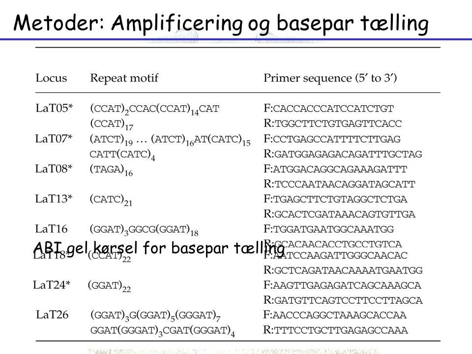 Metoder: Amplificering og basepar tælling PCR reaktioner med 8 forskellige primers LaT05 – 245-306 bp LaT07 – 340-400 bp LaT08 – 166-234 bp LaT13 – 234-262 bp LaT16 – 294-328 bp LaT18 – 286-318 bp LaT24 – 200-230 bp LaT26 – 352-382 bp ABI gel kørsel for basepar tælling