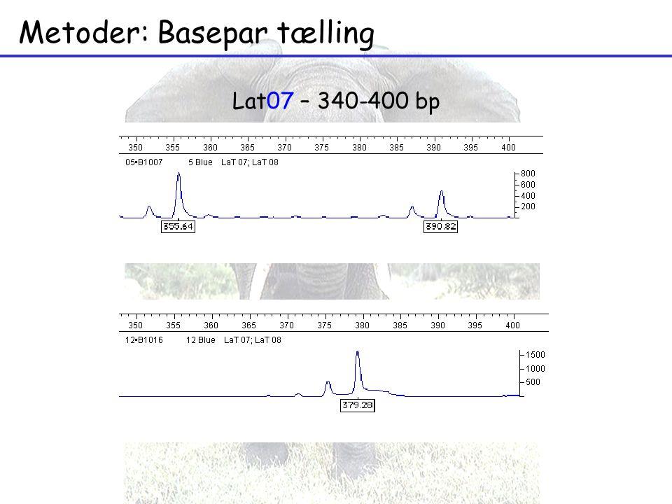 Metoder: Basepar tælling Lat07 – 340-400 bp