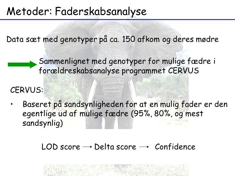 Metoder: Faderskabsanalyse Data sæt med genotyper på ca.