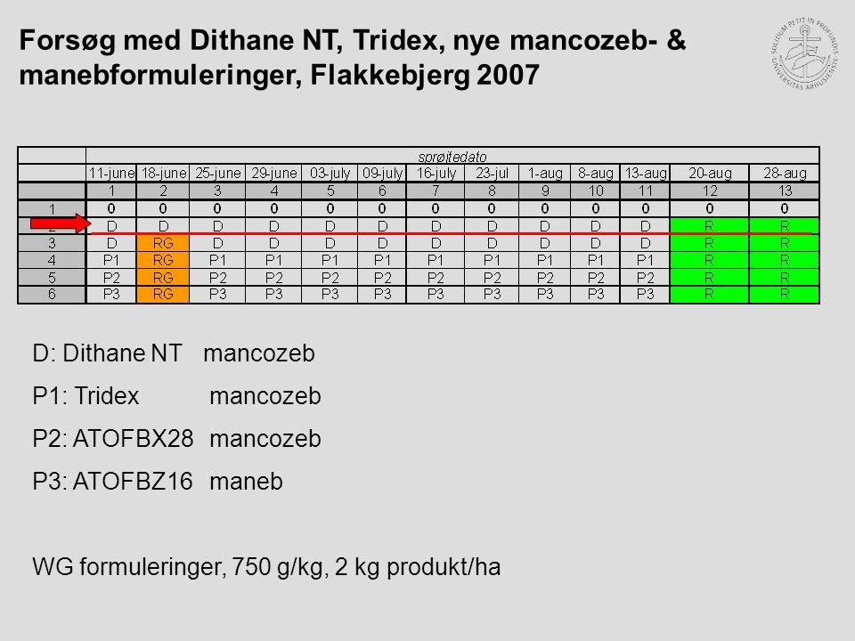 Forsøg med Dithane NT, Tridex, nye mancozeb- & manebformuleringer, Flakkebjerg 2007 D: Dithane NTmancozeb P1: Tridex mancozeb P2: ATOFBX28 mancozeb P3: ATOFBZ16 maneb WG formuleringer, 750 g/kg, 2 kg produkt/ha