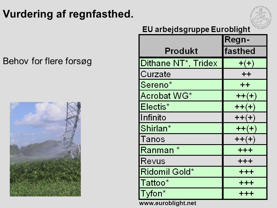 EU arbejdsgruppe Euroblight Vurdering af regnfasthed. Behov for flere forsøg www.euroblight.net