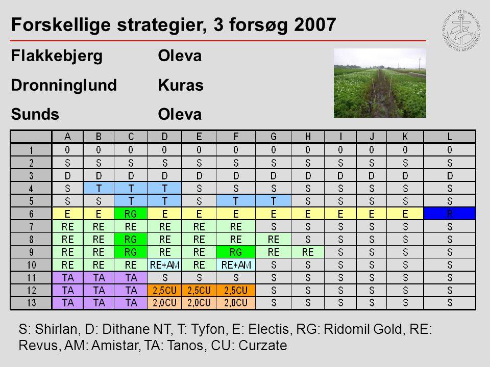 Forskellige strategier, 3 forsøg 2007 Flakkebjerg Oleva DronninglundKuras SundsOleva S: Shirlan, D: Dithane NT, T: Tyfon, E: Electis, RG: Ridomil Gold, RE: Revus, AM: Amistar, TA: Tanos, CU: Curzate