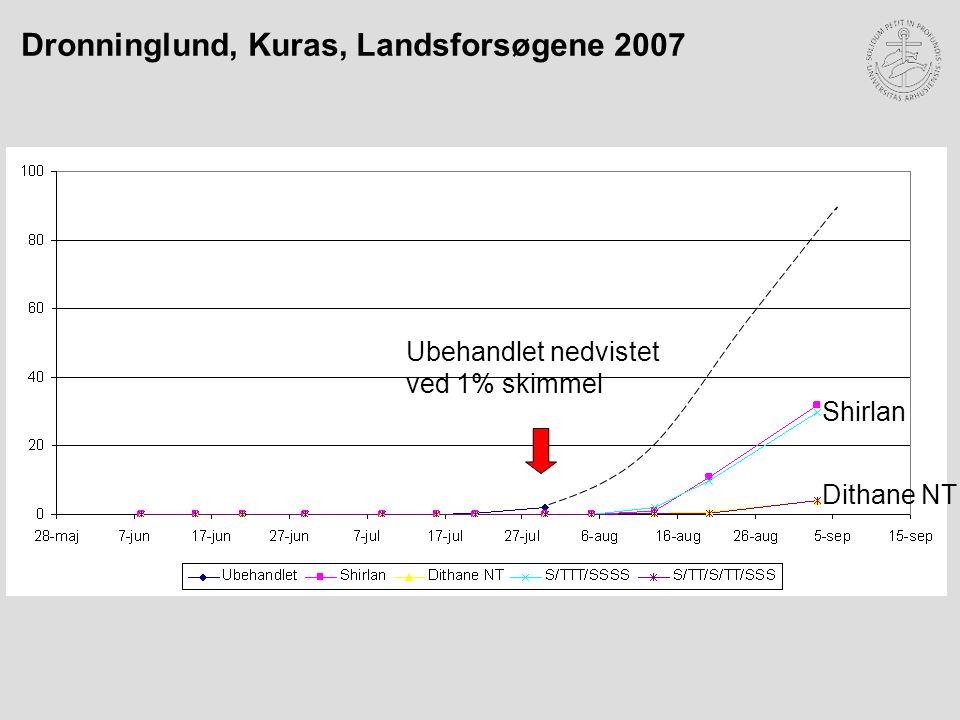 Ubehandlet nedvistet ved 1% skimmel Shirlan Dithane NT